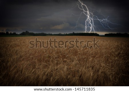 Storm over corn field - stock photo
