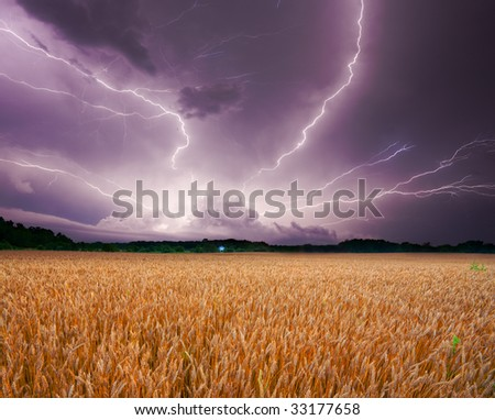 Storm over wheat field - stock photo