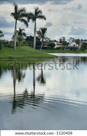 Storm remnants and palm trees reflected in manmade lake - stock photo