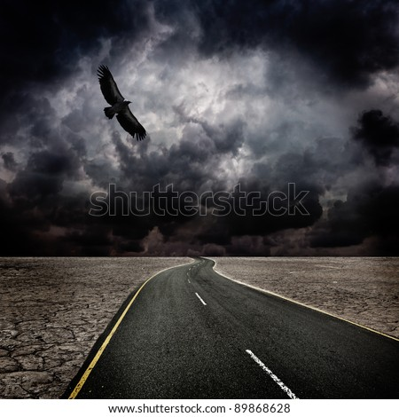 Storm sky, bird, road in desert - stock photo