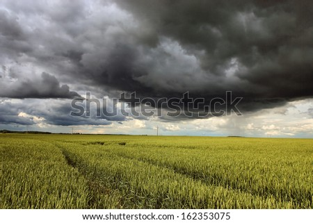 Stormy clouds over farmland