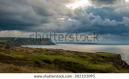 stormy clouds over the coast as cows graze