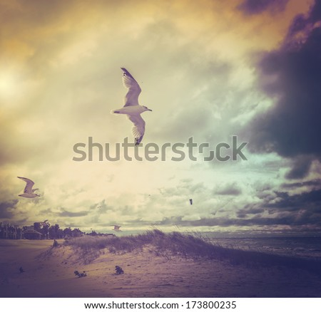 Stormy day  - stock photo