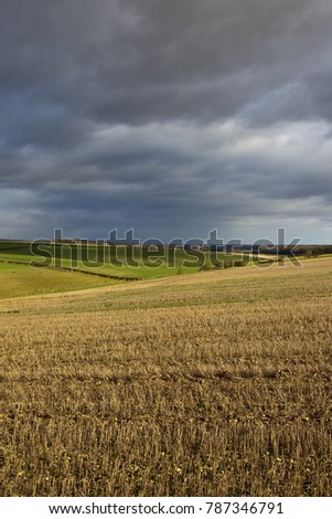 stormy indigo skies over a winter agricultural landscape with wheat and straw stubble in the yorkshire wolds