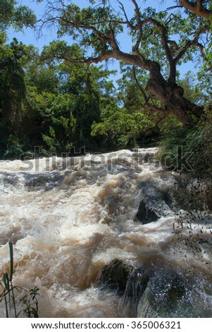 Stormy River flows in the forest Ethiopia - stock photo