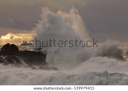 Stormy sea waves splash at sunset