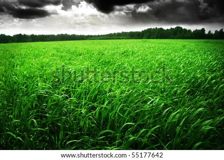 Stormy sky over green field. - stock photo