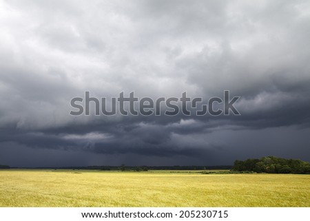 Stormy sky over green land.