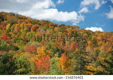 Stowe, Vermont Foliage - stock photo