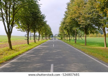 straight road in the countryside