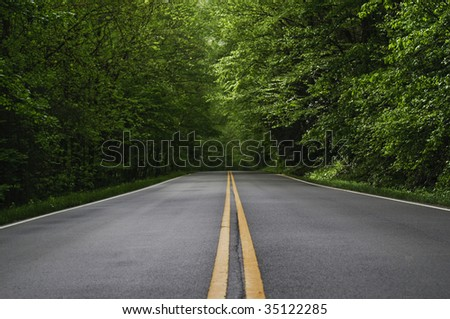 straight road vanishing into distance