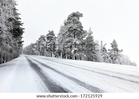 Straight winter road with trees on both sides on cloudy day - stock photo