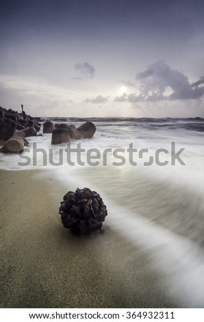 stranded nypa fruit on the beach. soft waves. concrete breakwater. sunrise sunset background with soft and dramatic clouds - stock photo