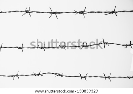 Strands of barb wire isolated on white.