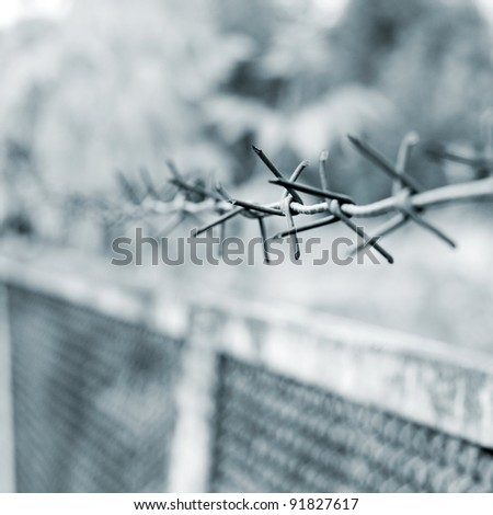 strands of barbed wire against a soft gray background - stock photo