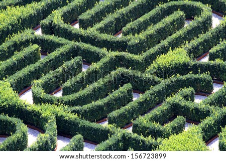 strange maze made with hedges in a garden of a villa - stock photo