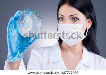 Strange organisms on this Petri dish. Confident female doctor in white uniform holding Petri Dish and looking at it while standing against grey background   - stock photo
