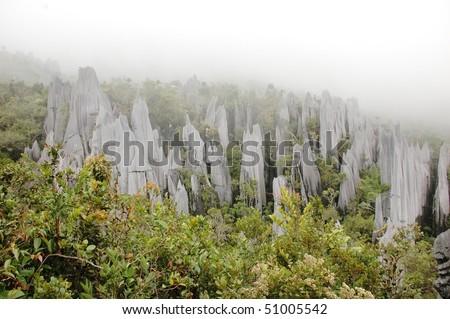 strange rock formations - pinnacles in Gunung Mulu National Park, Borneo, Malaysia - stock photo