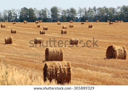 Straw and hay bales on a harvested field - stock photo