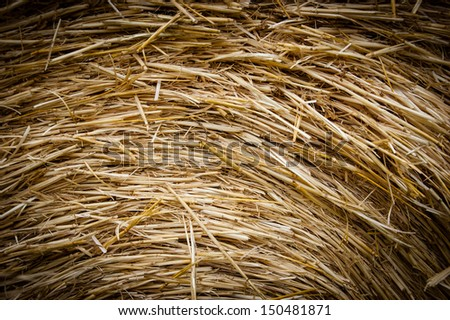Straw background. Motion. Shadowed angles. - stock photo