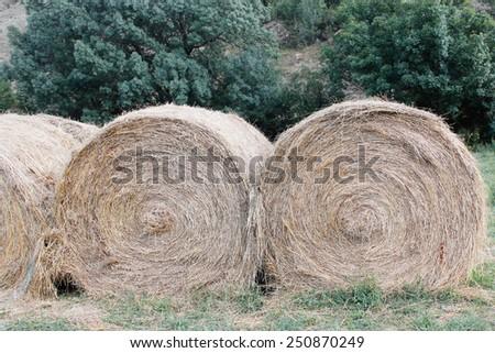 straw bale texture - stock photo