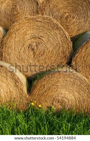 Straw bales - stock photo