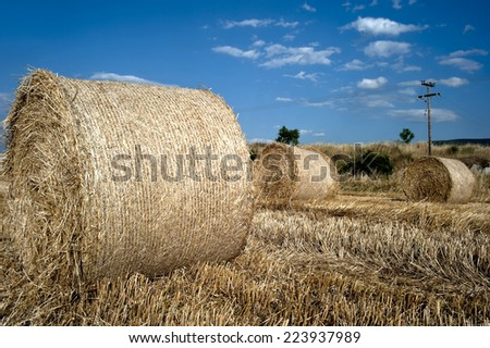 Straw bales in a farmland at the end of the summer - stock photo