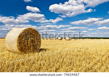 straw bales in a field with blue and white sky in autumn - stock photo