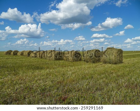 Straw bales in harvested field and blue sky with clouds. Beautiful countryside landscape.  - stock photo