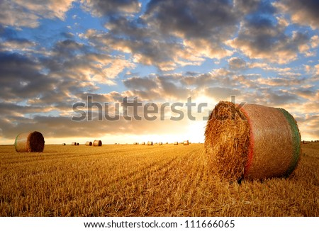 Straw bales in the sunset - stock photo