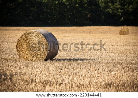 Straw bales on a harvested cereal field in dark tones with selective focus - stock photo