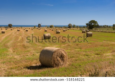 Straw bales on a harvested field on the east coast of the Swedish island of Oeland. In the background one of the typical windmills on the island