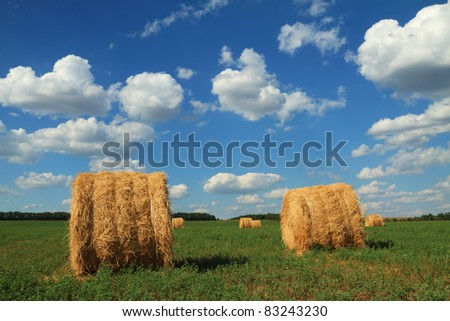 Straw bales on cloudy sky background