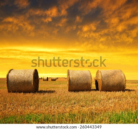 Straw bales on farmland at sunset - stock photo