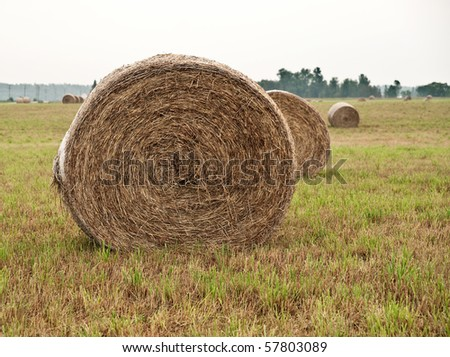 Straw bales on farmland in a cloudy summer day
