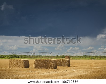 Straw bales on farmland with blue cloudy sky. View of the Longs Peak, Colorado on the backgound. - stock photo