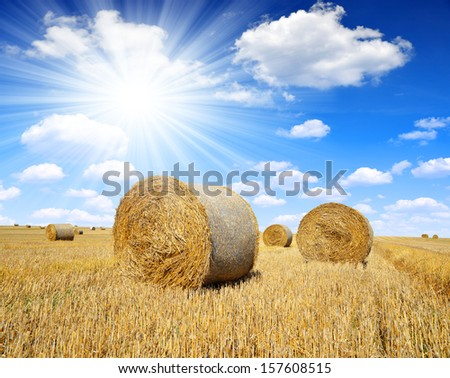 Straw bales on farmland with blue sky  - stock photo