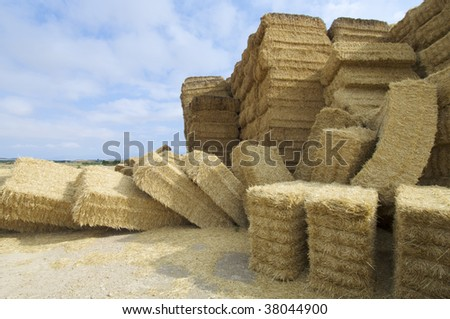 Straw bales on farmland with cloudy sky - stock photo