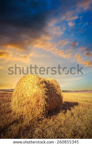 Straw bales on farmland with cloudy sky. Sunset landscape - stock photo