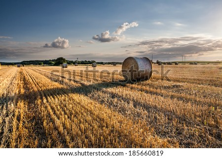 Straw bales on field against sky - stock photo