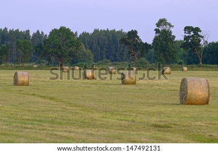 Straw bales on the meadow at sunset