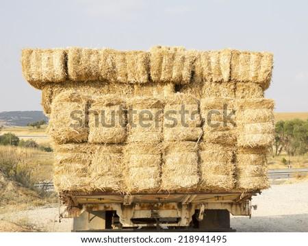 straw bales on truck , back wiev - stock photo