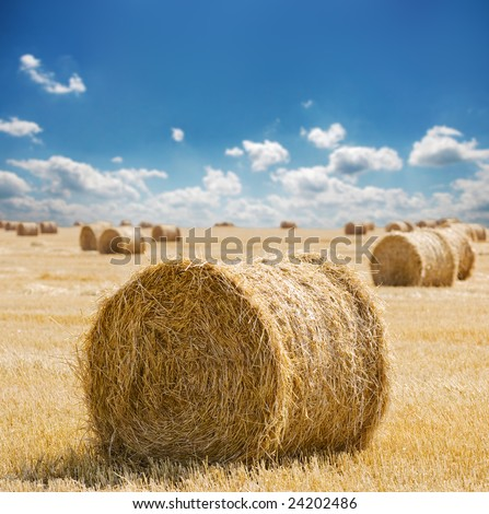 Straw bales with blue cloudy sky - stock photo