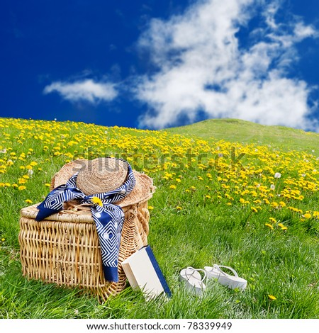 Straw hat, picnic basket, book & flip flops sitting on the grass in a rolling, dandelion filled meadow - stock photo