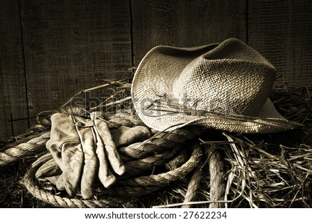 Straw hat with gloves on a bale of hay in barn/ BW