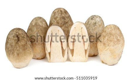 straw mushroom isolated on white background