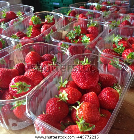 Strawberries at a farmers market packaged in plastic punnets or chips. Photographed in New Zealand.
