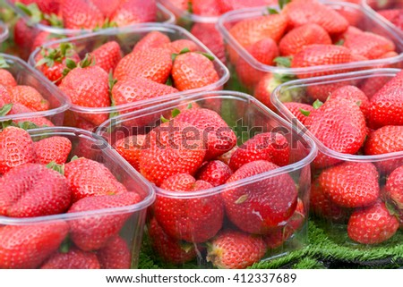 Strawberries (Fragaria ananassa) in punnets for sale at market s