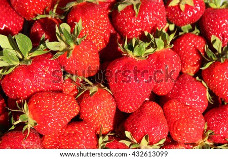 Strawberry background. A lot of red berries. Spring fruits
