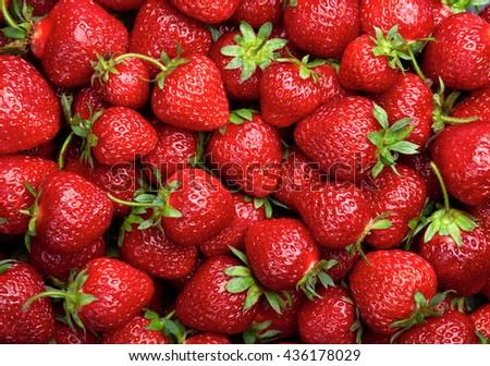 Strawberry background.  Red ripe organic strawberries on market counter - stock photo